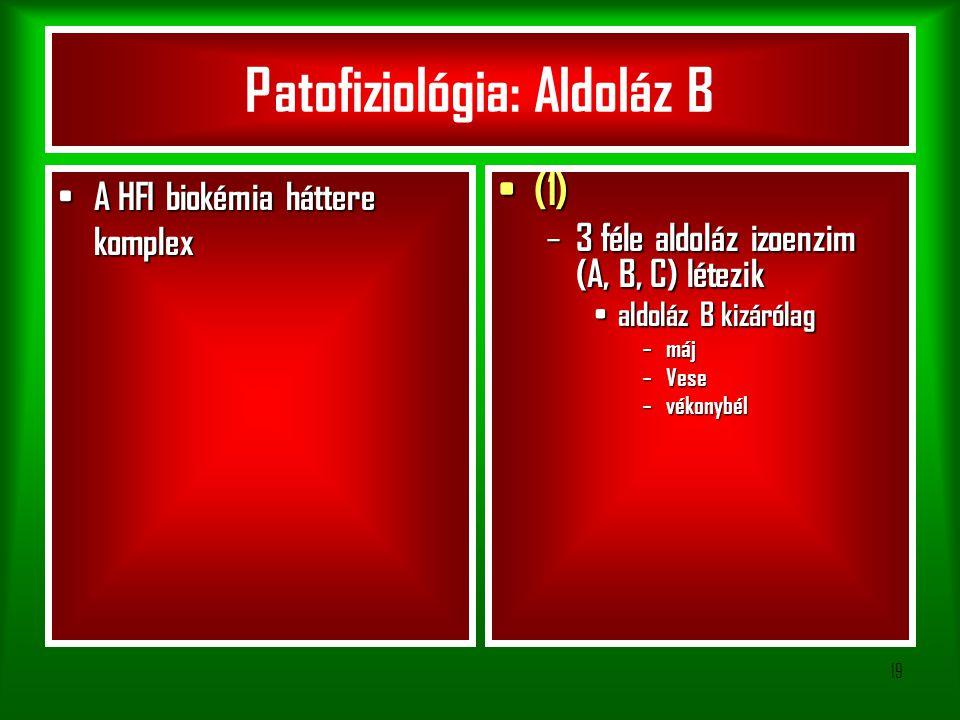19 A HFI biokémia háttere komplex A HFI biokémia háttere komplex (1) (1) – 3 féle aldoláz izoenzim (A, B, C) létezik aldoláz B kizárólag aldoláz B kizárólag – máj – Vese – vékonybél Patofiziológia: Aldoláz B