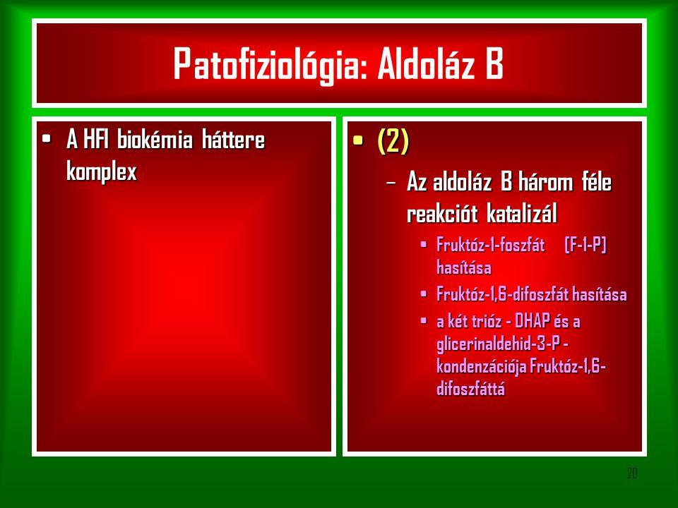 20 Patofiziológia: Aldoláz B A HFI biokémia háttere komplex A HFI biokémia háttere komplex (2) (2) – Az aldoláz B három féle reakciót katalizál Fruktóz-1-foszfát [F-1-P] hasítása Fruktóz-1-foszfát [F-1-P] hasítása Fruktóz-1,6-difoszfát hasítása Fruktóz-1,6-difoszfát hasítása a két trióz - DHAP és a glicerinaldehid-3-P - kondenzációja Fruktóz-1,6- difoszfáttá a két trióz - DHAP és a glicerinaldehid-3-P - kondenzációja Fruktóz-1,6- difoszfáttá