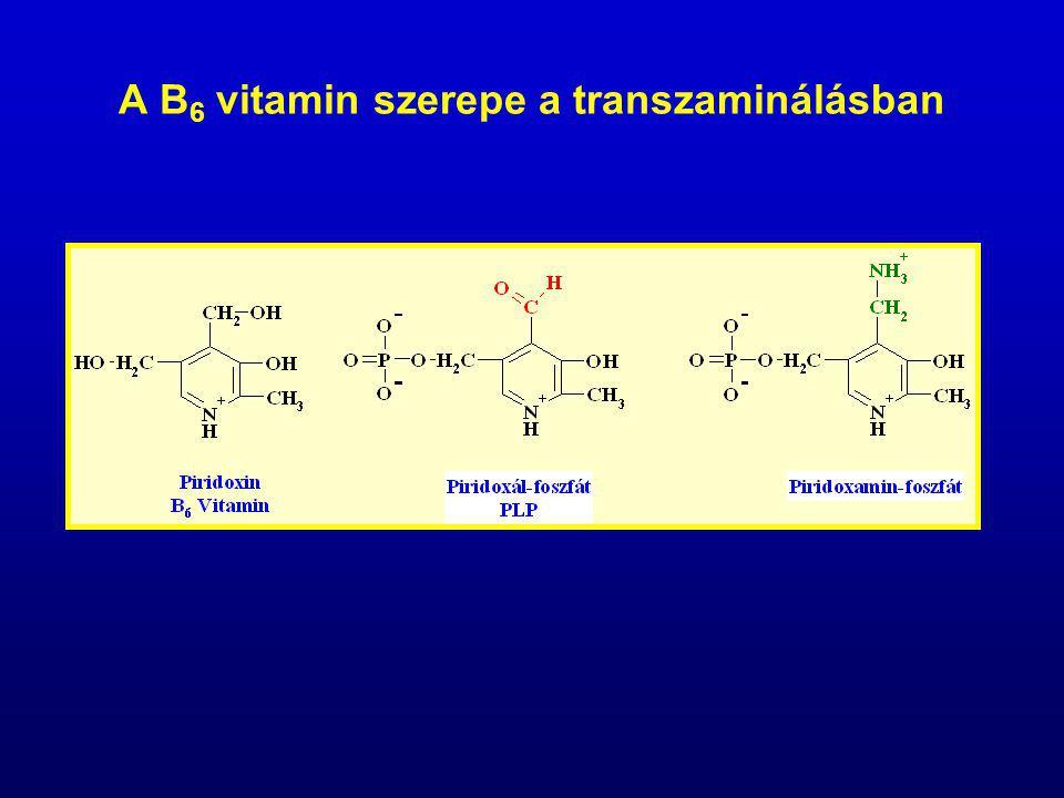 A B 6 vitamin szerepe a transzaminálásban