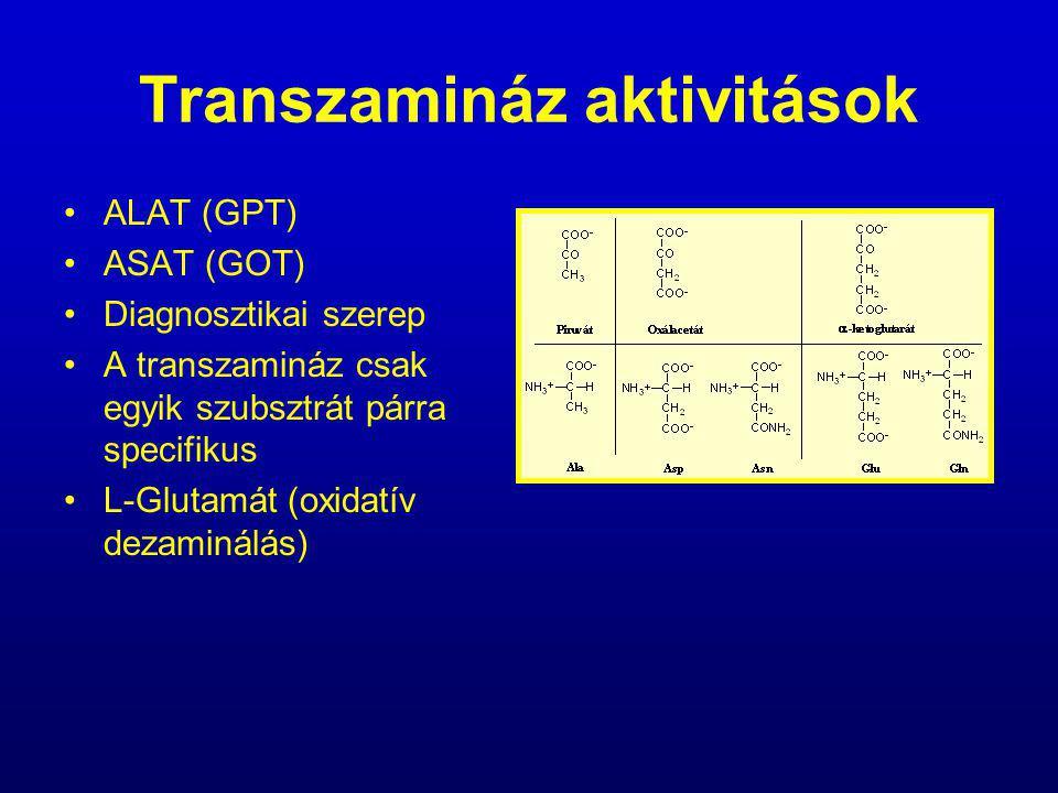 Transzamináz aktivitások ALAT (GPT) ASAT (GOT) Diagnosztikai szerep A transzamináz csak egyik szubsztrát párra specifikus L-Glutamát (oxidatív dezamin