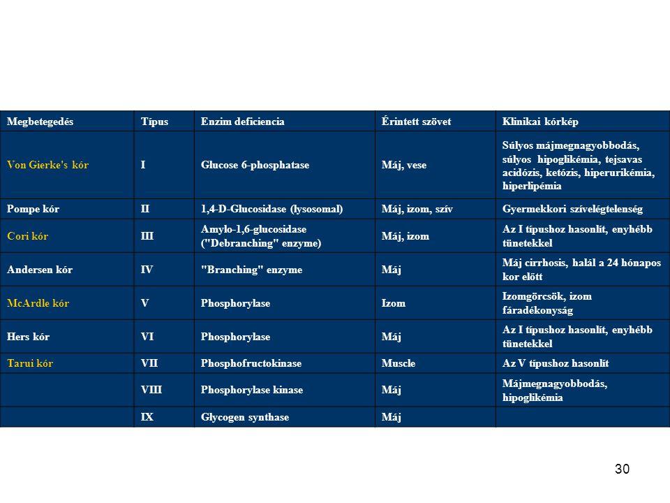 29 Szabályozás Kovalens módosítás –glucagon és adrenalin –G-protein kapcsolt receptorokat aktivál –cAMP cascad. –Alacsony vércukor szint –Glucagon pan