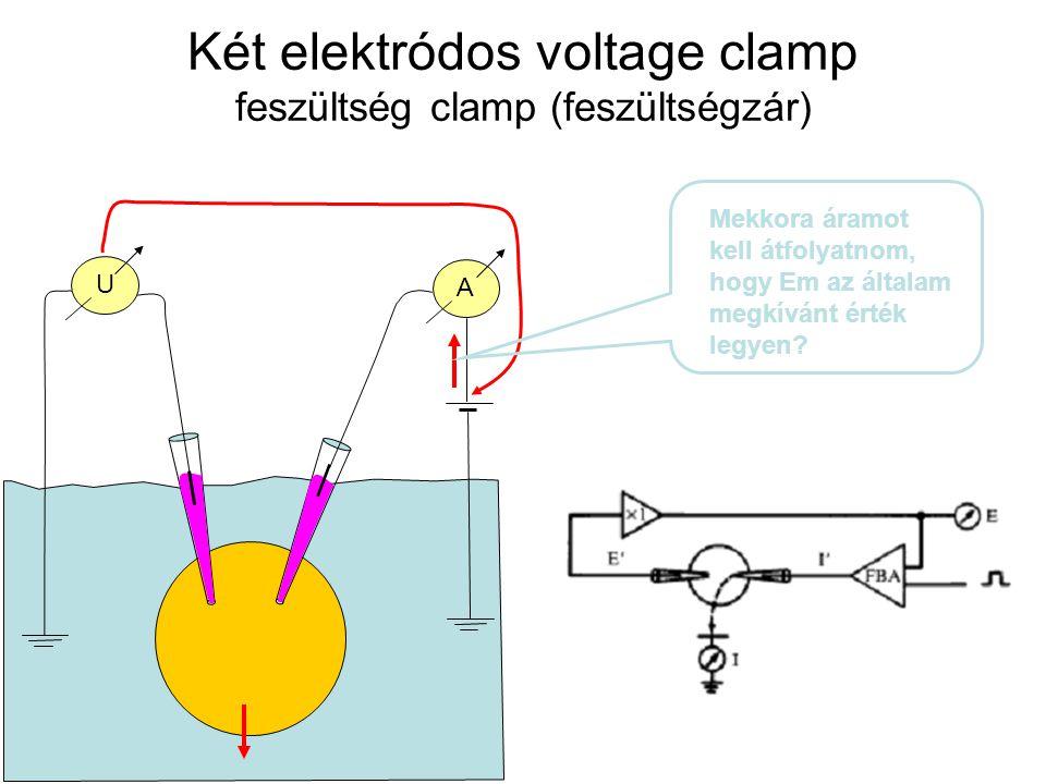 U A Két elektródos voltage clamp feszültség clamp (feszültségzár) Mekkora áramot kell átfolyatnom, hogy Em az általam megkívánt érték legyen?