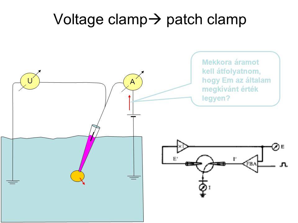Voltage clamp  patch clamp U A Mekkora áramot kell átfolyatnom, hogy Em az általam megkívánt érték legyen?