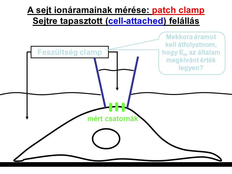 A sejt ionáramainak mérése: patch clamp Sejtre tapasztott (cell-attached) felállás Feszültség clamp Mekkora áramot kell átfolyatnom, hogy E m az által