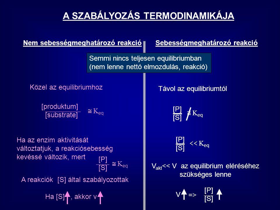 A SZABÁLYOZÁS TERMODINAMIKÁJA Nem sebességmeghatározó reakcióSebességmeghatározó reakció Közel az equilibriumhoz Semmi nincs teljesen equilibriumban (