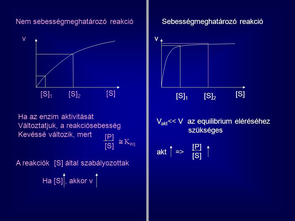 Nem sebességmeghatározó reakcióSebességmeghatározó reakció [S] 1 [S] 2 v [S] v Ha az enzim aktivitását Változtatjuk, a reakciósebesség Kevéssé változi