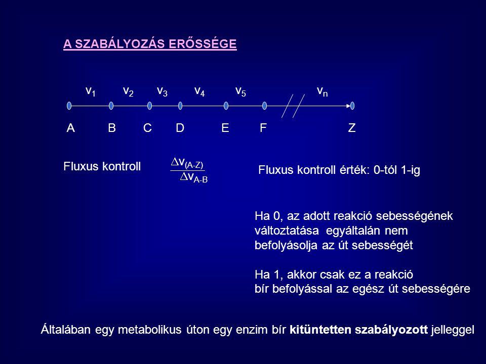 A SZABÁLYOZÁS ERŐSSÉGE A B C D E F Z v 1 v 2 v 3 v 4 v 5 v n Fluxus kontroll  v (A-Z)  v A-B Fluxus kontroll érték: 0-tól 1-ig Ha 0, az adott rea