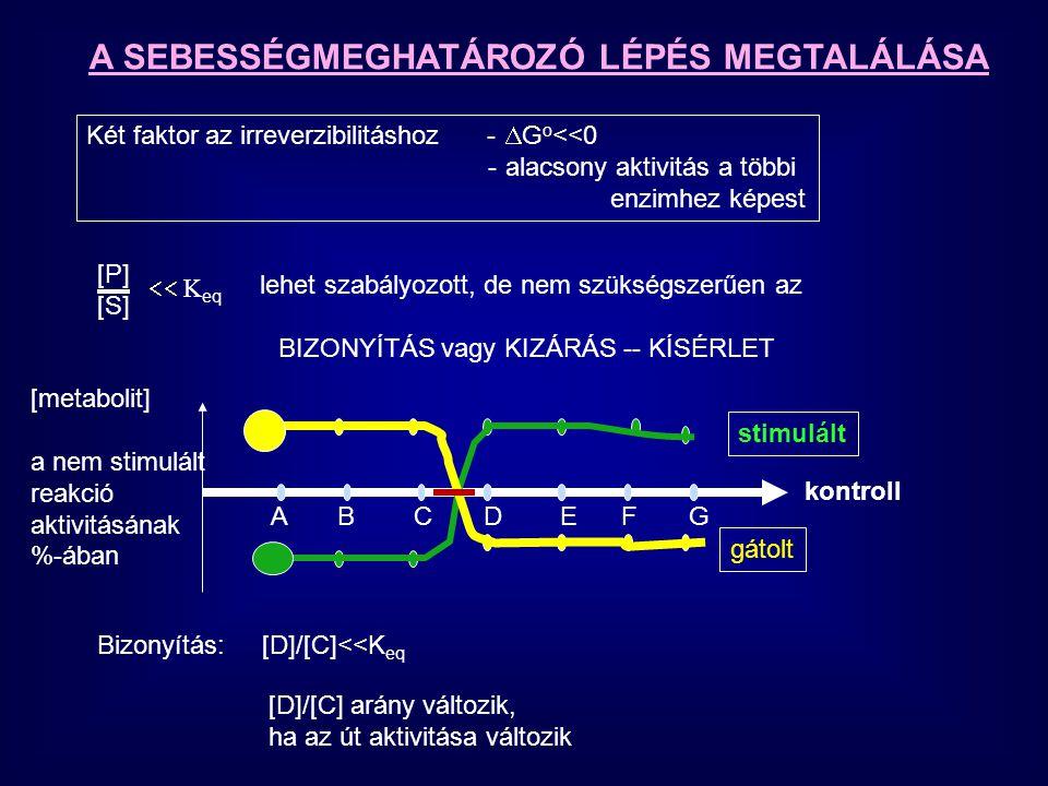 A SEBESSÉGMEGHATÁROZÓ LÉPÉS MEGTALÁLÁSA Két faktor az irreverzibilitáshoz -  G o <<0 -alacsony aktivitás a többi enzimhez képest lehet szabályozott,