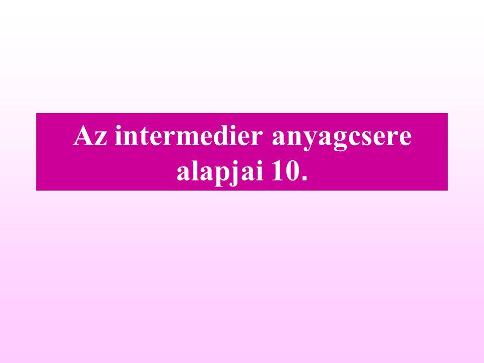 Az intermedier anyagcsere alapjai 10.