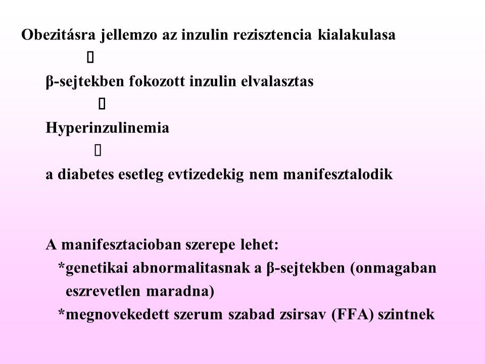 Obezitásra jellemzo az inzulin rezisztencia kialakulasa  β-sejtekben fokozott inzulin elvalasztas  Hyperinzulinemia  a diabetes esetleg evtized
