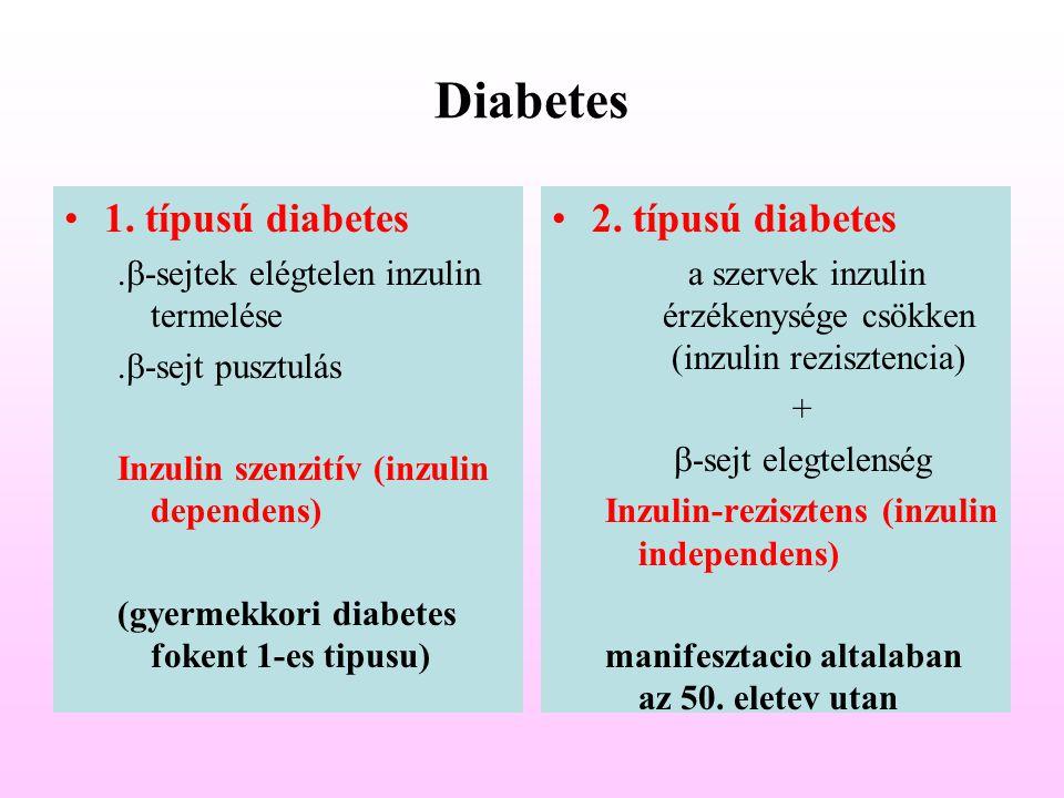 Diabetes 1. típusú diabetes.  -sejtek elégtelen inzulin termelése.  -sejt pusztulás Inzulin szenzitív (inzulin dependens) (gyermekkori diabetes foke