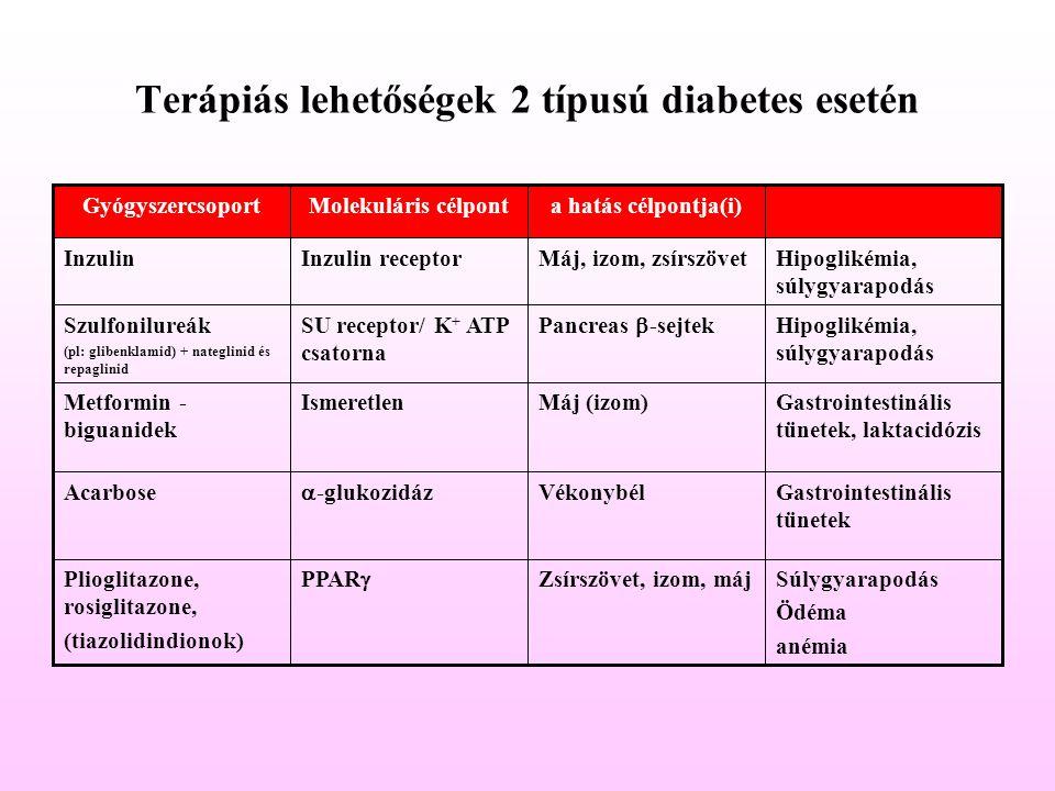 Terápiás lehetőségek 2 típusú diabetes esetén Súlygyarapodás Ödéma anémia Zsírszövet, izom, máj PPAR  Plioglitazone, rosiglitazone, (tiazolidindionok