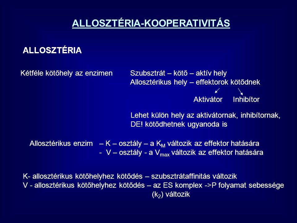 ALLOSZTÉRIA-KOOPERATIVITÁS ALLOSZTÉRIA Kétféle kötőhely az enzimenSzubsztrát – kötő – aktív hely Allosztérikus hely – effektorok kötődnek Lehet külön hely az aktivátornak, inhibítornak, DE.
