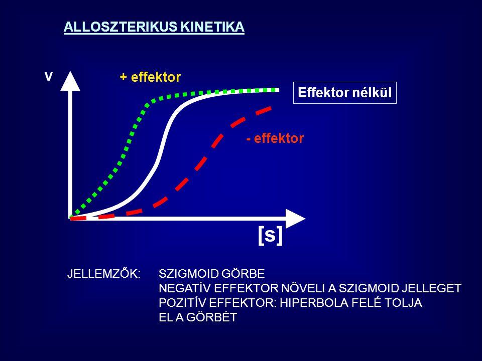 ALLOSZTERIKUS KINETIKA Effektor nélkül + effektor - effektor JELLEMZŐK:SZIGMOID GÖRBE NEGATÍV EFFEKTOR NÖVELI A SZIGMOID JELLEGET POZITÍV EFFEKTOR: HIPERBOLA FELÉ TOLJA EL A GÖRBÉT V [s]