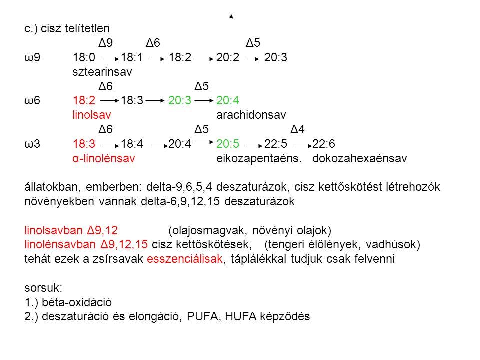c.) cisz telítetlen Δ9 Δ6 Δ5 ω918:0 18:118:220:220:3 sztearinsav Δ6 Δ5 ω618:218:320:320:4 linolsavarachidonsav Δ6 Δ5 Δ4 ω318:318:420:420:522:522:6 α-linolénsaveikozapentaéns.dokozahexaénsav állatokban, emberben: delta-9,6,5,4 deszaturázok, cisz kettőskötést létrehozók növényekben vannak delta-6,9,12,15 deszaturázok linolsavban Δ9,12(olajosmagvak, növényi olajok) linolénsavban Δ9,12,15 cisz kettőskötések, (tengeri élőlények, vadhúsok) tehát ezek a zsírsavak esszenciálisak, táplálékkal tudjuk csak felvenni sorsuk: 1.) béta-oxidáció 2.) deszaturáció és elongáció, PUFA, HUFA képződés