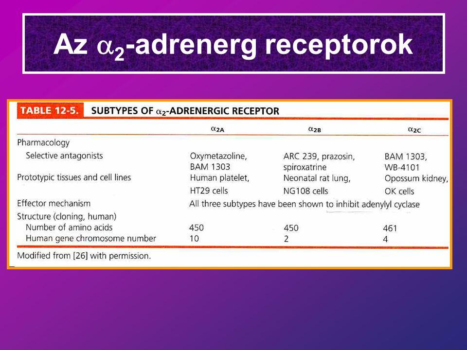 Az  2 -adrenerg receptorok