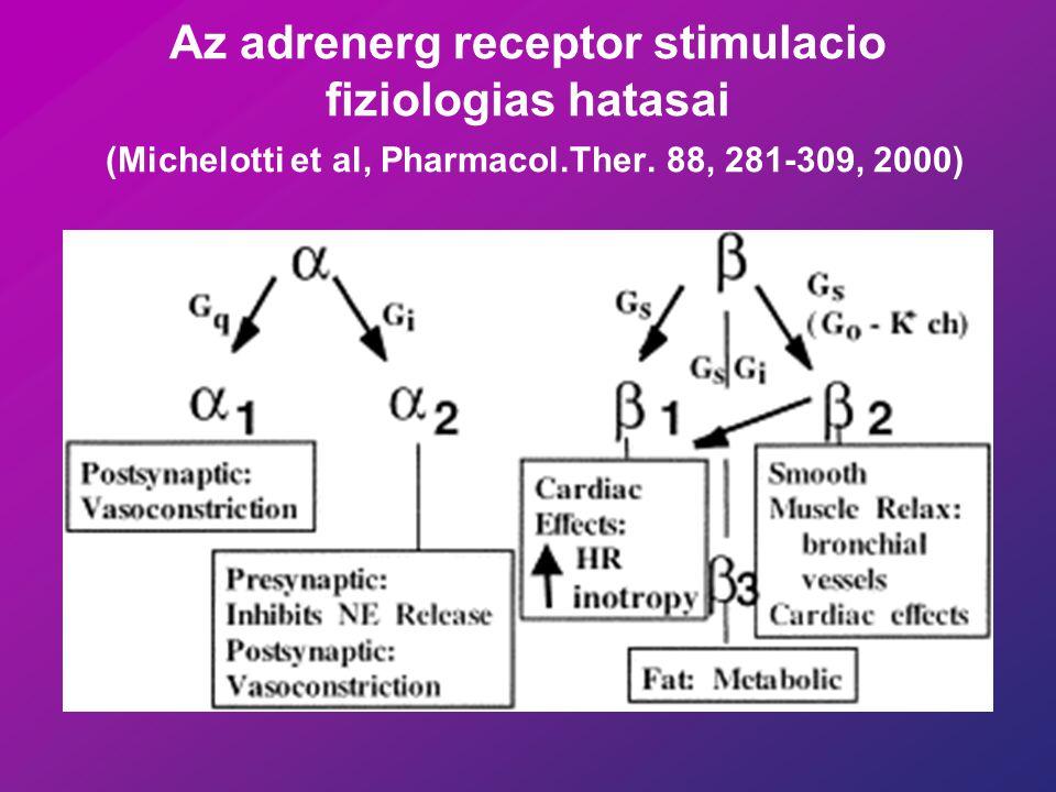 Noradrenerg innervációHormonális stimulus + ino- és kronotróp relaxáció lipolízis relaxáció Glikokén lebontás Vasodilatatio Dilatatio ß3ß3 lipolízis