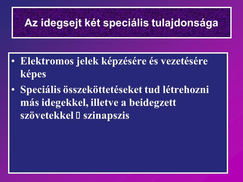 Kolineszteráz gátlók Diagnosztikai teszt  Myastenia gravis –edrophonium (tensilon) – rövid hatású Myasthenia gravis terápia –pyridostigmin –neostigmin –hosszabb hatású Szemcseppek Glaucoma –physostigmin –neostigmin