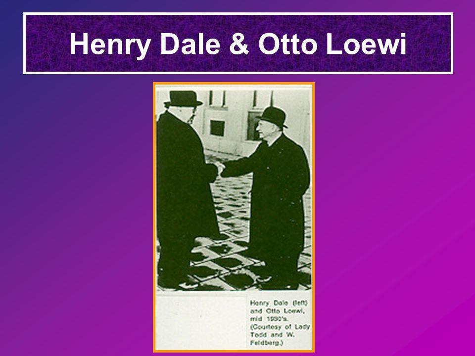Otto Loewi kísérlete