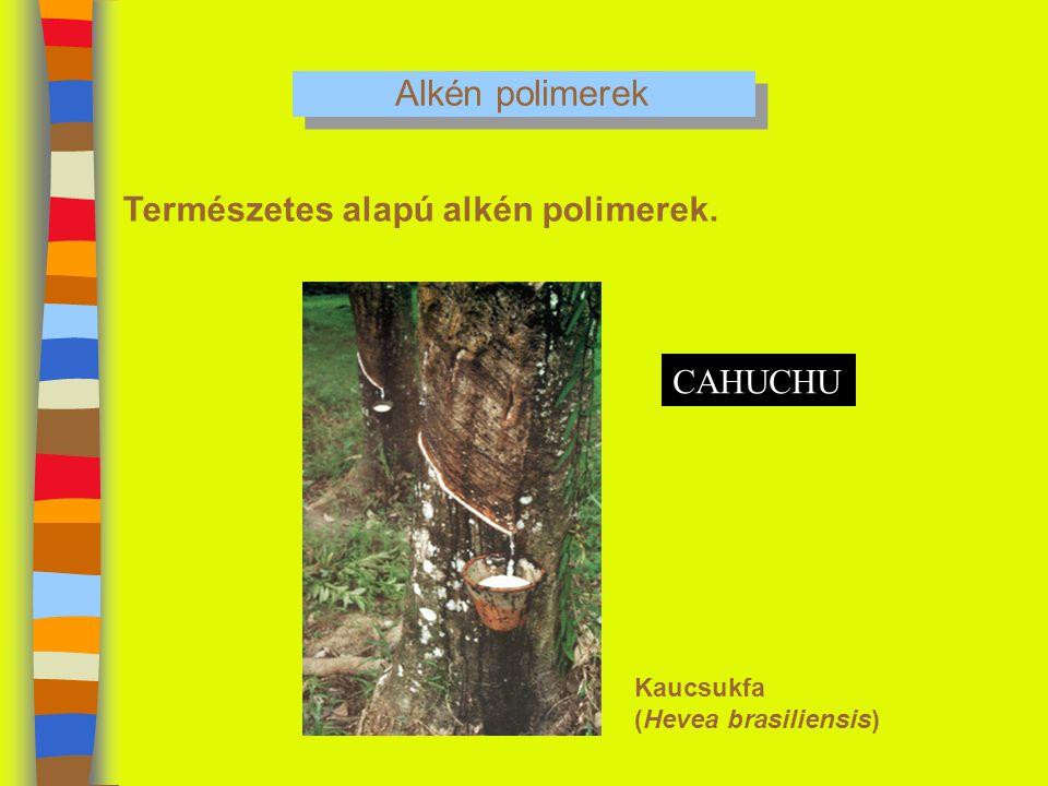 Alkén polimerek Természetes alapú alkén polimerek. Kaucsukfa (Hevea brasiliensis) CAHUCHU