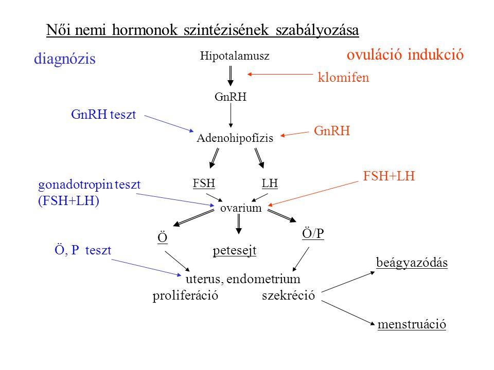 Női nemi hormonok szintézisének szabályozása Hipotalamusz Adenohipofízis GnRH FSHLH ovarium Ö Ö/P petesejt uterus, endometrium GnRH teszt klomifen ovuláció indukció diagnózis GnRH szekrécióproliferáció menstruáció beágyazódás gonadotropin teszt (FSH+LH) FSH+LH Ö, P teszt