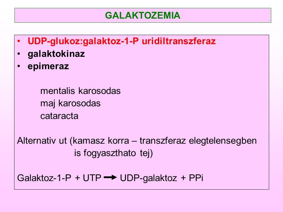 UDP-glukoz:galaktoz-1-P uridiltranszferaz galaktokinaz epimeraz mentalis karosodas maj karosodas cataracta Alternativ ut (kamasz korra – transzferaz e