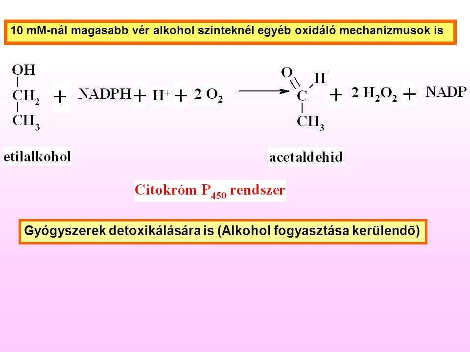10 mM-nál magasabb vér alkohol szinteknél egyéb oxidáló mechanizmusok is Gyógyszerek detoxikálására is (Alkohol fogyasztása kerülendõ)