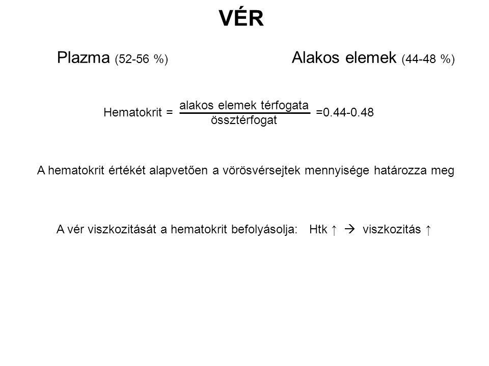 Plazma (52-56 %) VÉR Alakos elemek (44-48 %) Hematokrit = =0.44-0.48 alakos elemek térfogata össztérfogat A vér viszkozitását a hematokrit befolyásolja: Htk ↑  viszkozitás ↑ A hematokrit értékét alapvetően a vörösvérsejtek mennyisége határozza meg