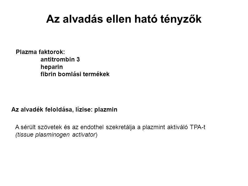 Az alvadás ellen ható tényzők Plazma faktorok: antitrombin 3 heparin fibrin bomlási termékek Az alvadék feloldása, lízise: plazmin A sérült szövetek és az endothel szekretálja a plazmint aktiváló TPA-t (tissue plasminogen activator)