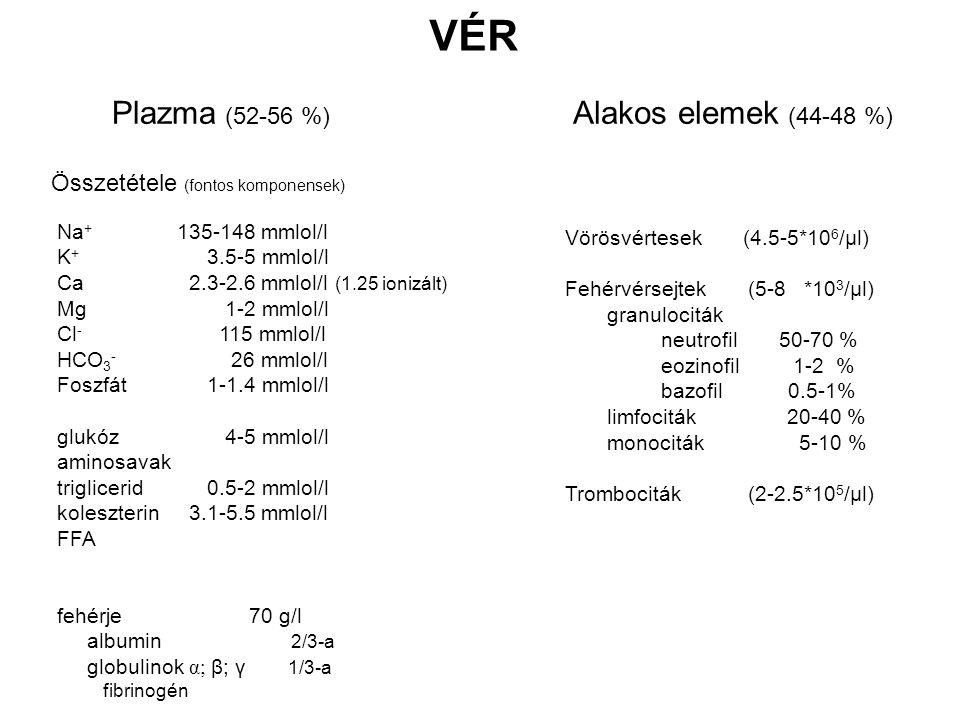 Plazma (52-56 %) VÉR Összetétele (fontos komponensek) Alakos elemek (44-48 %) Vörösvértesek (4.5-5*10 6 /µl) Fehérvérsejtek (5-8 *10 3 /µl) granulociták neutrofil 50-70 % eozinofil 1-2 % bazofil 0.5-1% limfociták 20-40 % monociták 5-10 % Trombociták (2-2.5*10 5 /µl) Na + 135-148 mmlol/l K + 3.5-5 mmlol/l Ca 2.3-2.6 mmlol/l (1.25 ionizált) Mg 1-2 mmlol/l Cl - 115 mmlol/l HCO 3 - 26 mmlol/l Foszfát 1-1.4 mmlol/l glukóz 4-5 mmlol/l aminosavak triglicerid 0.5-2 mmlol/l koleszterin 3.1-5.5 mmlol/l FFA fehérje70 g/l albumin 2/3-a globulinok α; β; γ 1/3-a fibrinogén