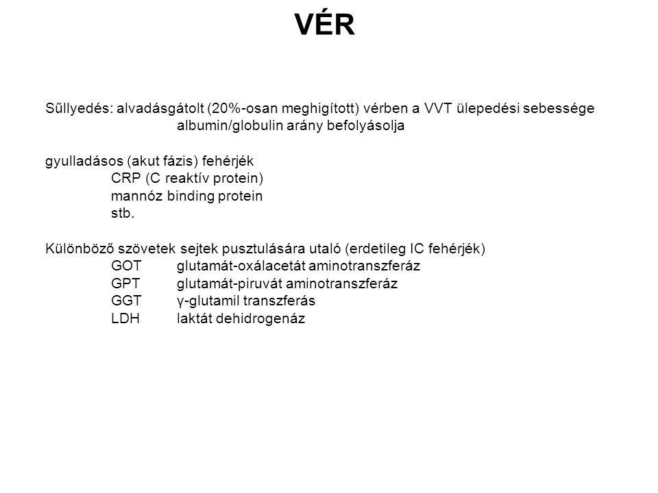 VÉR Sűllyedés: alvadásgátolt (20%-osan meghigított) vérben a VVT ülepedési sebessége albumin/globulin arány befolyásolja gyulladásos (akut fázis) fehérjék CRP (C reaktív protein) mannóz binding protein stb.
