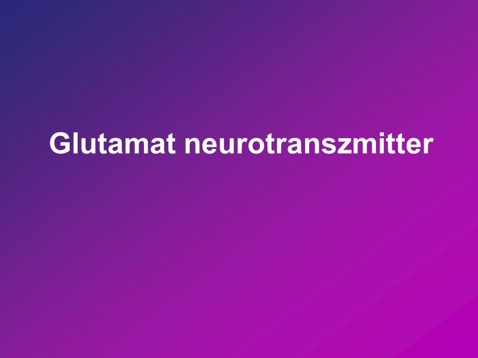 Fokozott glutamaterg aktivitás  neurotoxikus Ischemia Neurodegenerációk Epileptiform görcsök
