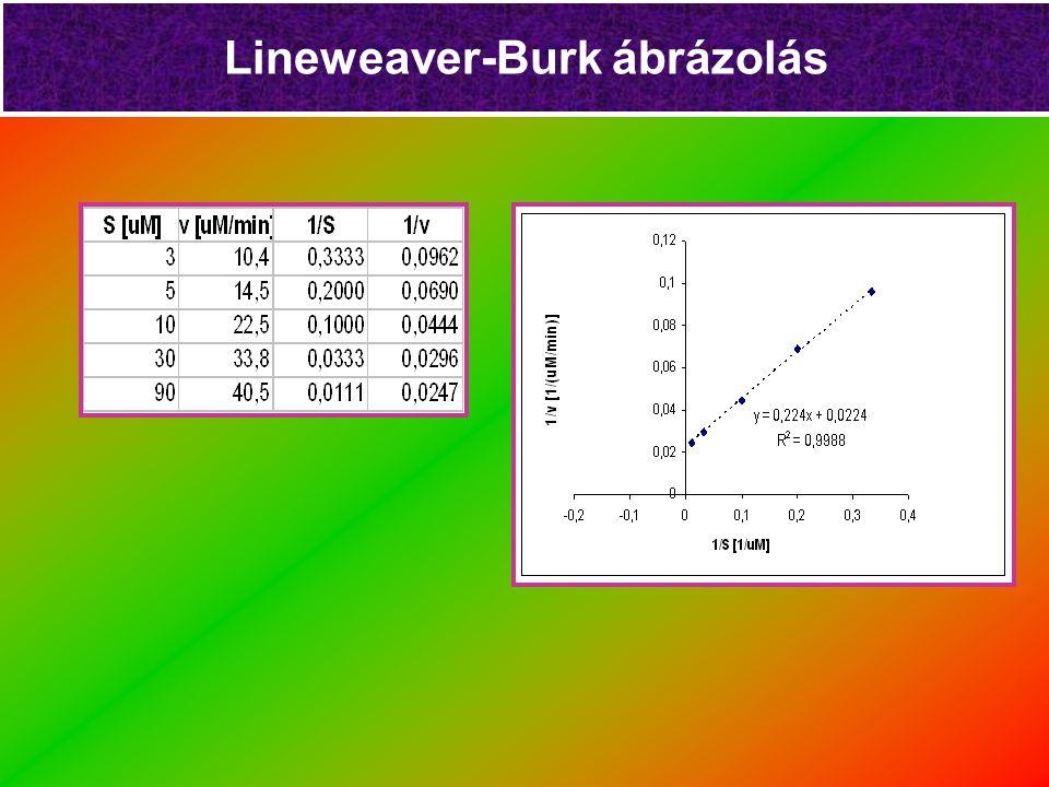 Lineweaver-Burk ábrázolás 1/[S] 1/v a= K M /V Max 1/V Max -1/K M