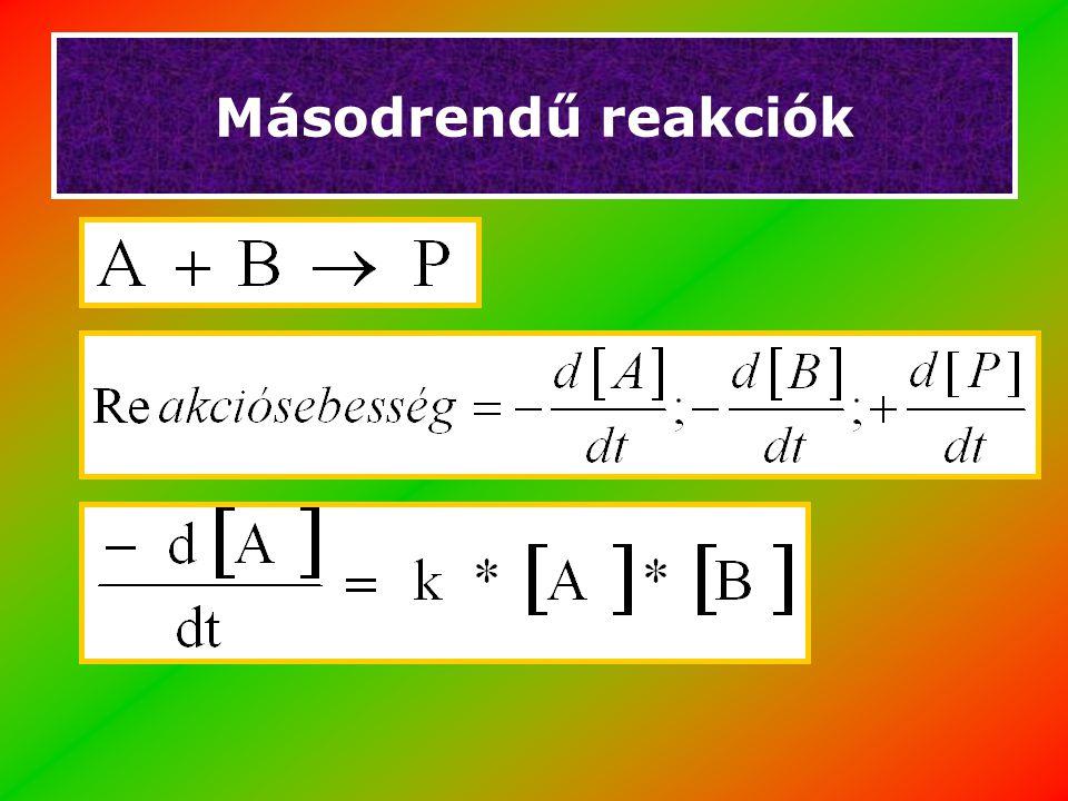 Michaelis-Menten kinetika Stacionárius állapot (Steady state ):