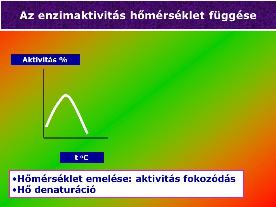 Az enzimaktivitás hőmérséklet függése t o C Aktivitás % Hőmérséklet emelése: aktivitás fokozódás Hő denaturáció