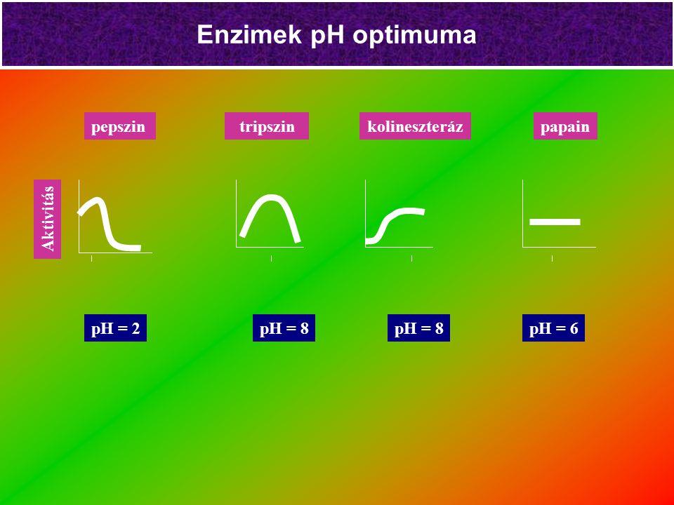 Enzimek pH optimuma pH = 8 pH = 2pH = 6 Aktivitás tripszinkolineszterázpepszinpapain