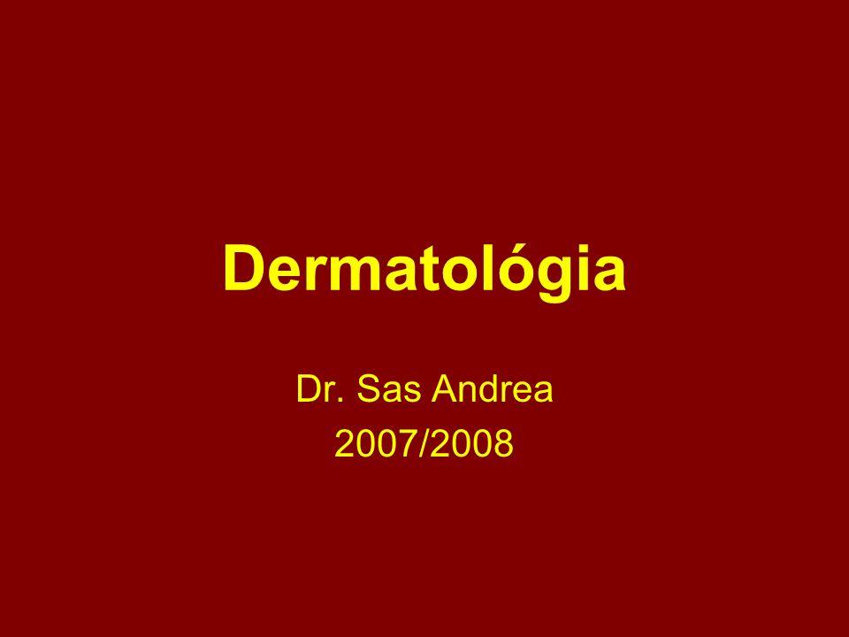 Dermatológia Dr. Sas Andrea 2007/2008