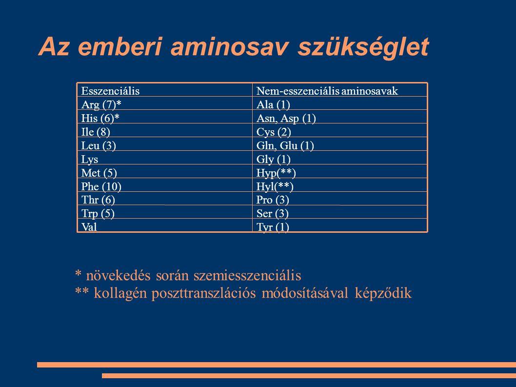 Az emberi aminosav szükséglet Ser (3)Trp (5) Tyr (1)Val Pro (3)Thr (6) Hyl(**)Phe (10) Hyp(**)Met (5) Gly (1)Lys Gln, Glu (1)Leu (3) Cys (2)Ile (8) As
