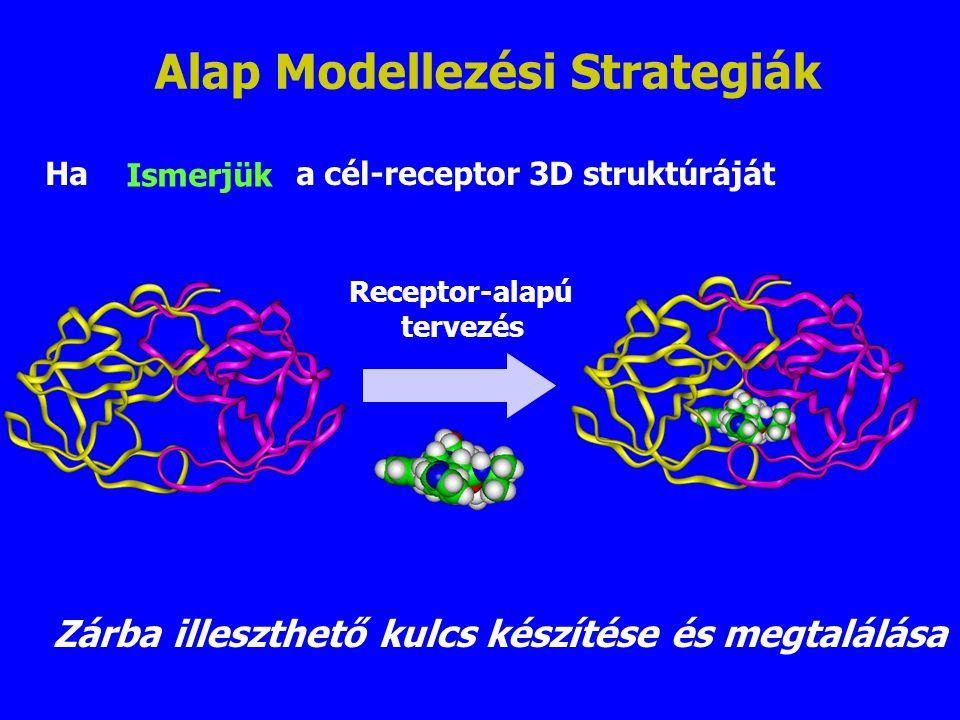 Ha a cél-receptor 3D struktúráját Receptor-alapú tervezés Zárba illeszthető kulcs készítése és megtalálása Alap Modellezési Strategiák Ismerjük