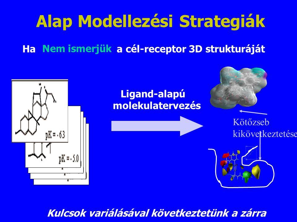 Alap Modellezési Strategiák Ha a cél-receptor 3D strukturáját Ligand-alapú molekulatervezés Kulcsok variálásával következtetünk a zárra Kötőzseb kiköv