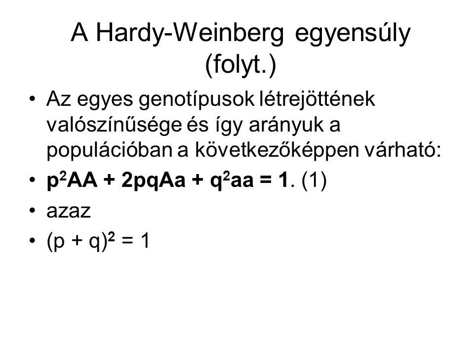 A Hardy-Weinberg egyensúly (folyt.) Ideális populációban az utódnemzedékben az allélek gyakorisága azonos a szülői nemzedék allélgyakoriságával.