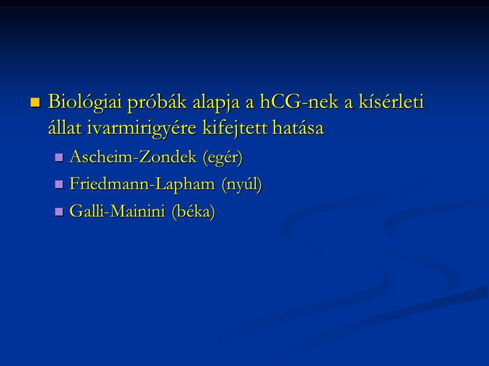 Biológiai próbák alapja a hCG-nek a kísérleti állat ivarmirigyére kifejtett hatása Biológiai próbák alapja a hCG-nek a kísérleti állat ivarmirigyére k