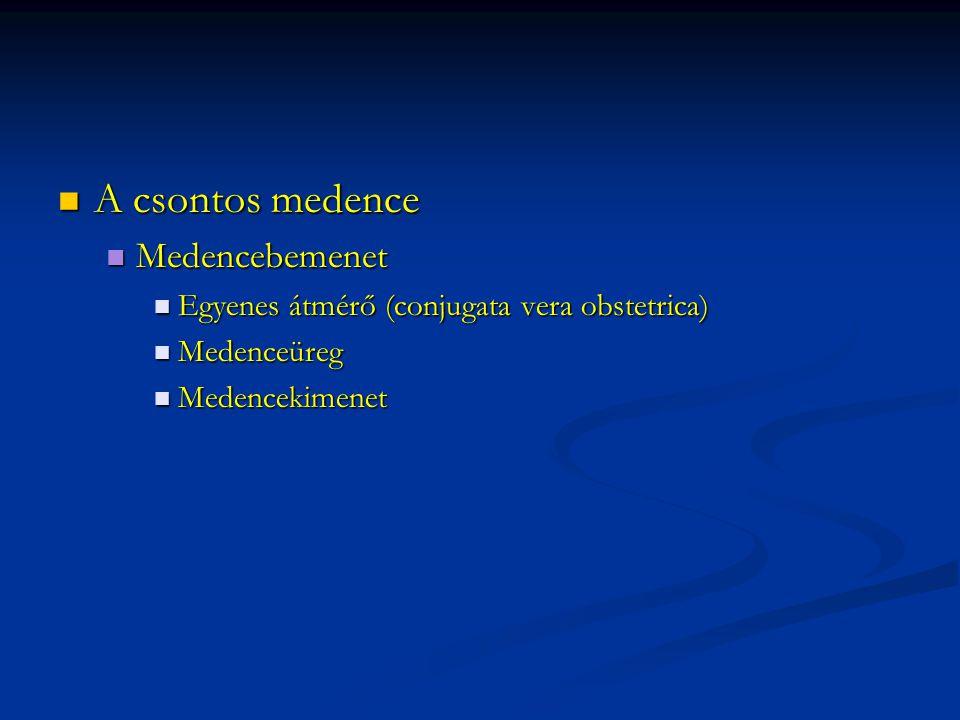 A csontos medence A csontos medence Medencebemenet Medencebemenet Egyenes átmérő (conjugata vera obstetrica) Egyenes átmérő (conjugata vera obstetrica