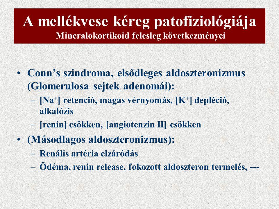 Androgén hormonok bioszintézise