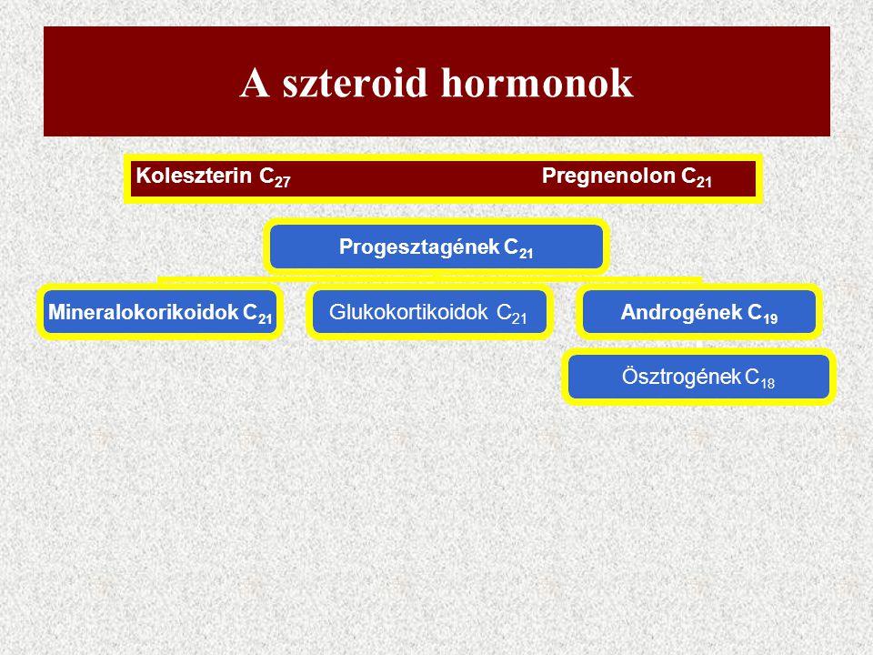 A szteroid hormon szintézis a különböző sejtekben csak egyes lépésekben különbözik Szteroid hormont termelő sejtek képesek a de novo koleszterin szint