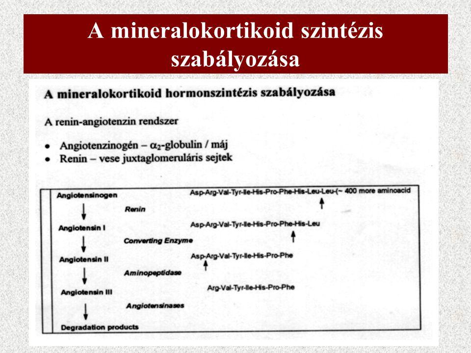 Az aldoszteron bioszintézise