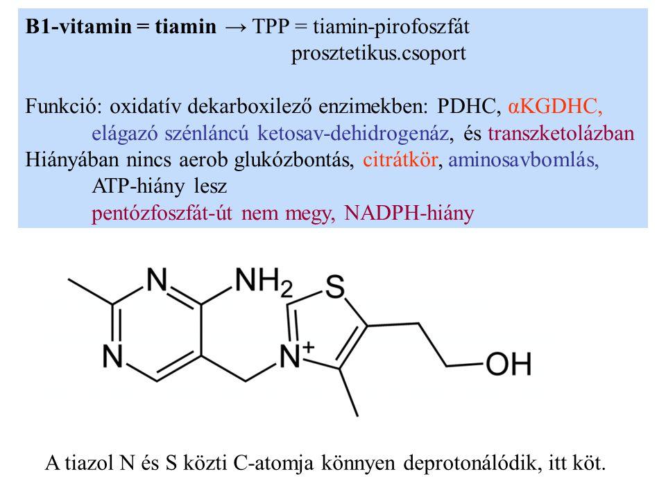B1-vitamin = tiamin→ TPP = tiamin-pirofoszfát prosztetikus.csoport Funkció: oxidatív dekarboxilező enzimekben: PDHC, αKGDHC, elágazó szénláncú ketosav