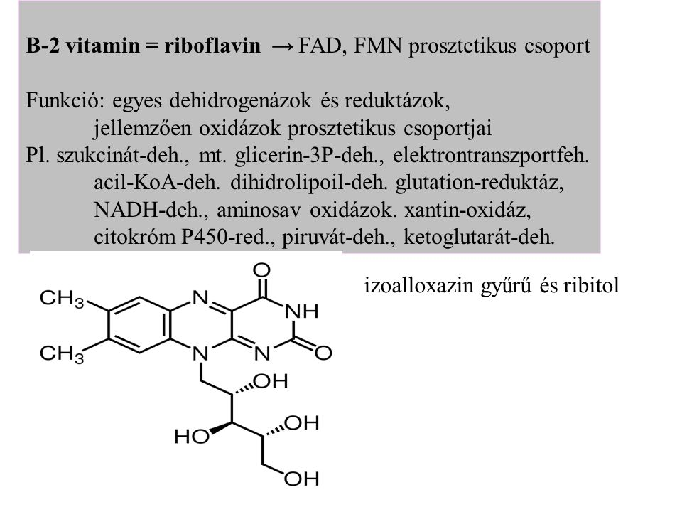 B-2 vitamin = riboflavin →FAD, FMN prosztetikus csoport Funkció: egyes dehidrogenázok és reduktázok, jellemzően oxidázok prosztetikus csoportjai Pl. s