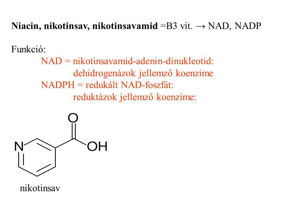 Niacin, nikotinsav, nikotinsavamid =B3 vit. → NAD, NADP Funkció: NAD = nikotinsavamid-adenin-dinukleotid: dehidrogenázok jellemző koenzime NADPH = red