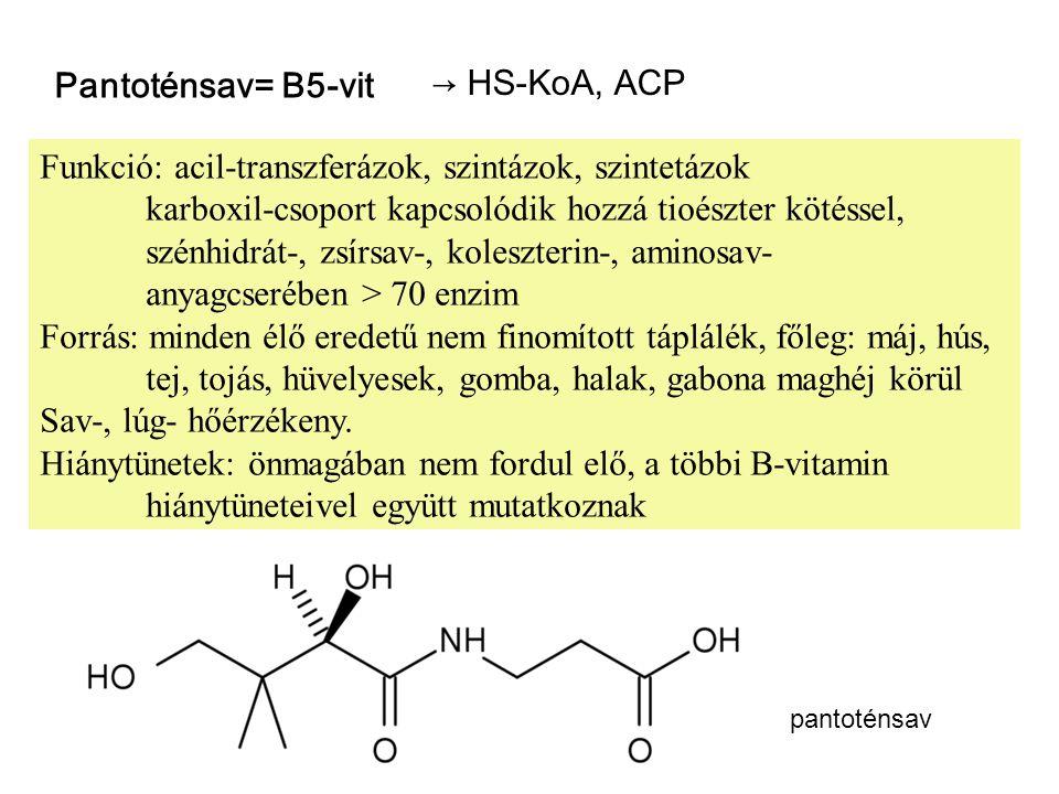 Pantoténsav= B5-vit → HS-KoA, ACP Funkció: acil-transzferázok, szintázok, szintetázok karboxil-csoport kapcsolódik hozzá tioészter kötéssel, szénhidrá